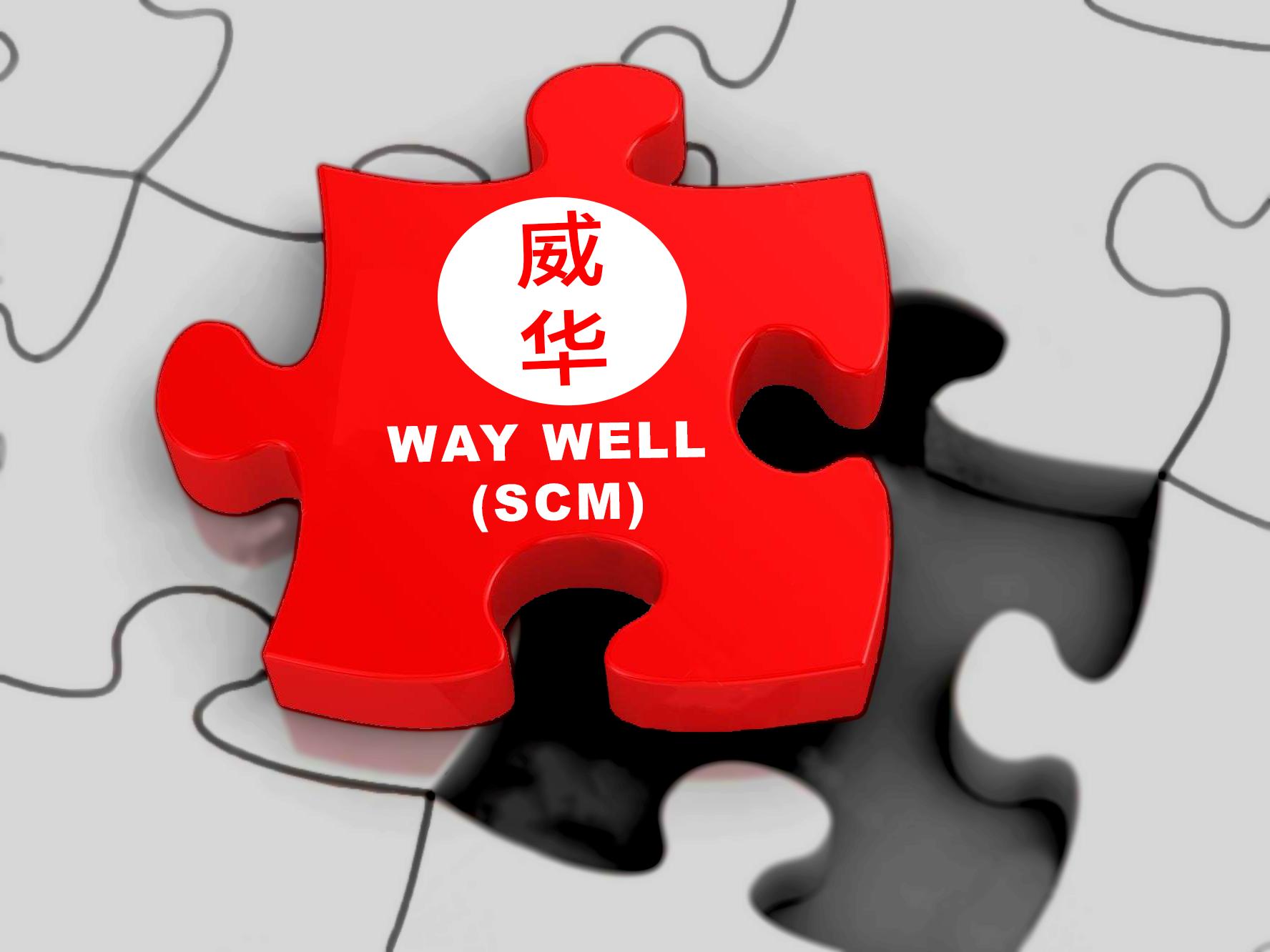 Waywell-logo